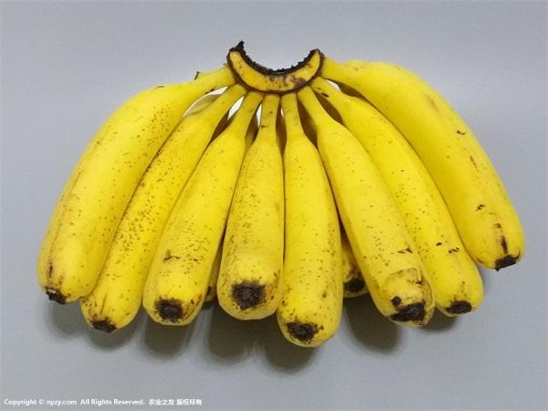 晚上吃香蕉会胖吗